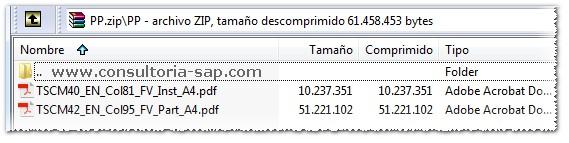 SAP PP - Consultoria-SAP.com