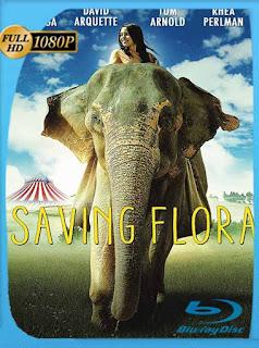 Saving Flora (2018) HD [1080p] Latino [GoogleDrive] SilvestreHD