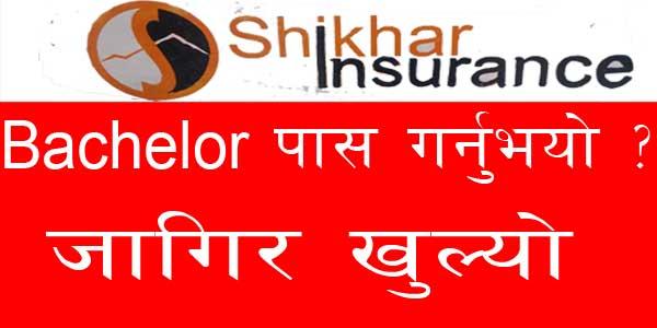 Insurance Vacancy