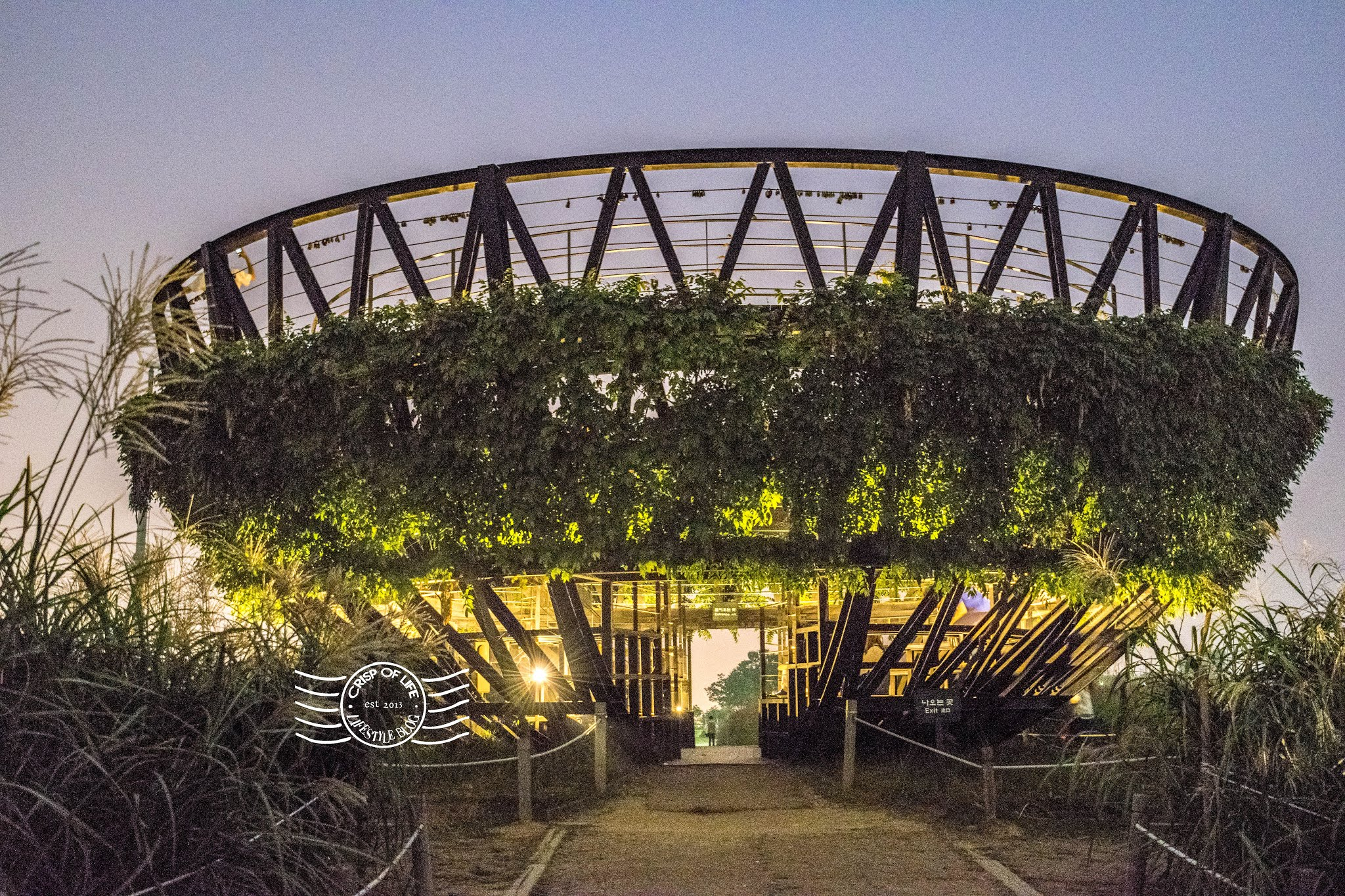 Haneul Park - A Secret Spot for Instagram Worthy Photos in Seoul, South Korea
