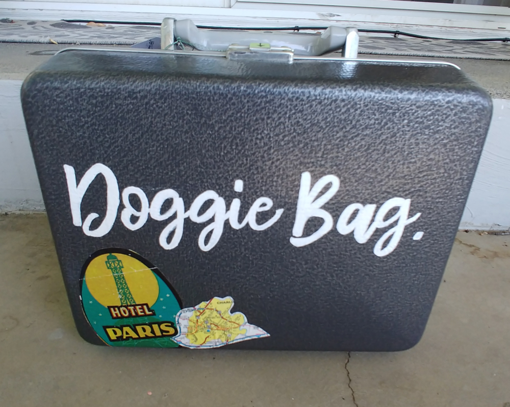 Pet travel luggage