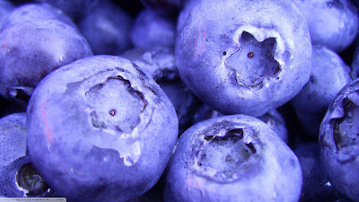 blueberry hd wallpaper