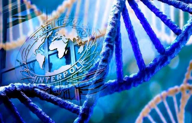 Interpol contará con nueva base de datos de ADN para identificar a desaparecidos en todo el mundo