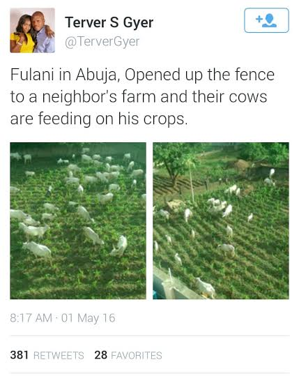 6 Photos: See what Fulani herdsmen did to a farm in Abuja