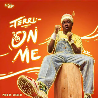 Terri, on me mp3 download