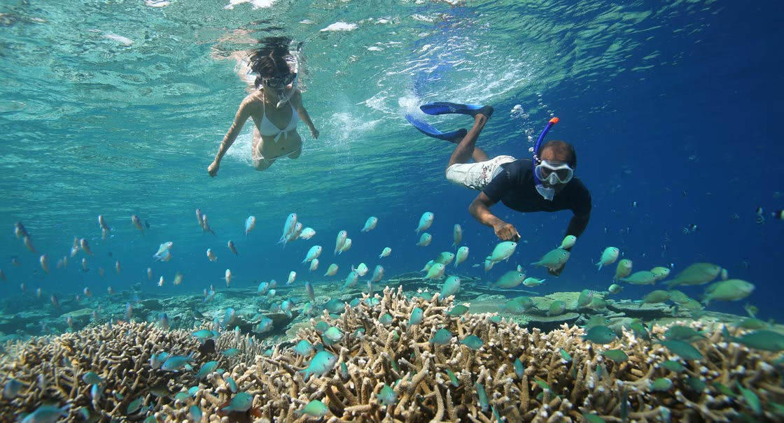 Maldives Top 5 Snorkeling Destinations in the World