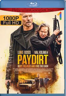 Más allá de la ley (Paydirt) (2020) [1080p Web-DL] [Castellano-Inglés] [LaPipiotaHD]