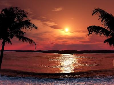 puesta-de-sol-entre-palmeras-a-orillas-del-mar