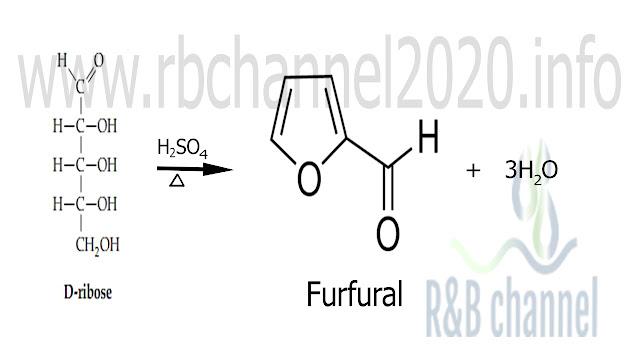 تأثير الحموض المعدنية على البنتوزات وتشكل الفورفورال