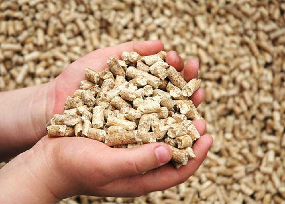 Compound feed manufacturing
