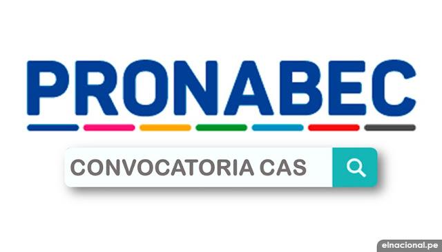 Convocatorias CAS PRONABEC 2021 - WWW.PRONABEC.GOB.PE