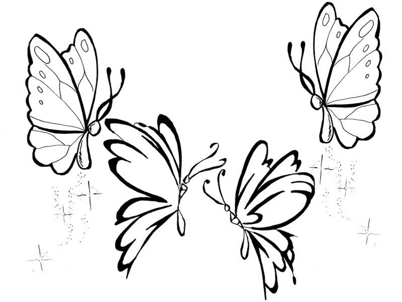 Desenhos Para Colorir, Desenhar E Pintar : Lindos Desenhos