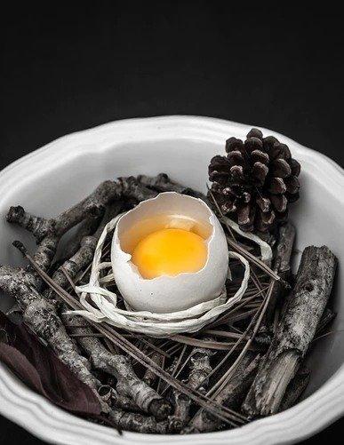 egg yolk benefits for hair / raw egg eating benefits / egg for hair benefits / egg benefits on hair