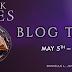 Blog Tour: DARK SKIES by Danielle Jensen