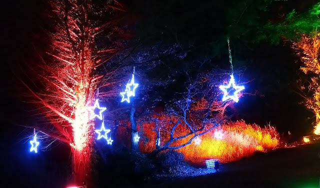 Christmas at Beaulieu - Mill Pond Walk