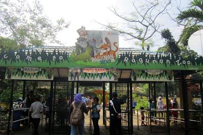 kebun binatang ragunan, tempat wisata di Jakarta