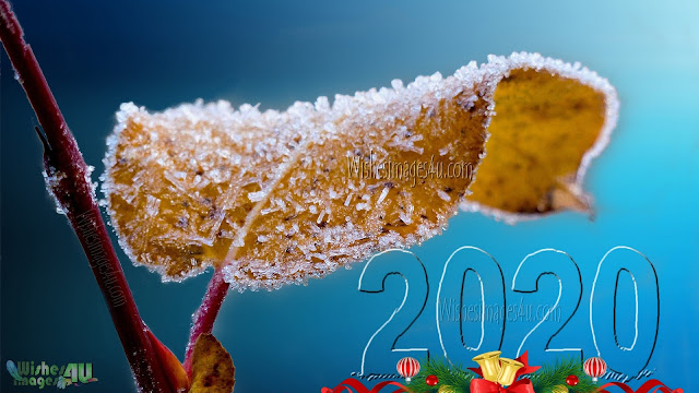 New Year 2020 Full HD Ultra HD 4K Wallpapers Download For Desktop