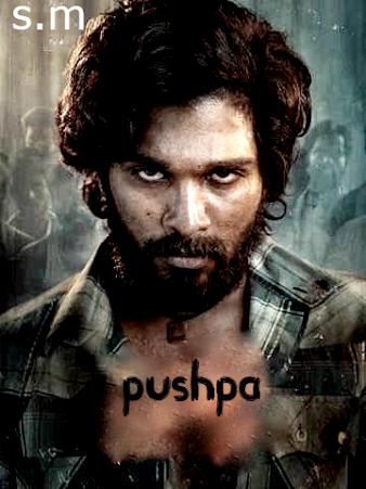 pushpa movie download in hindi 480p filmymeet 480p filmymeet filmyzilla