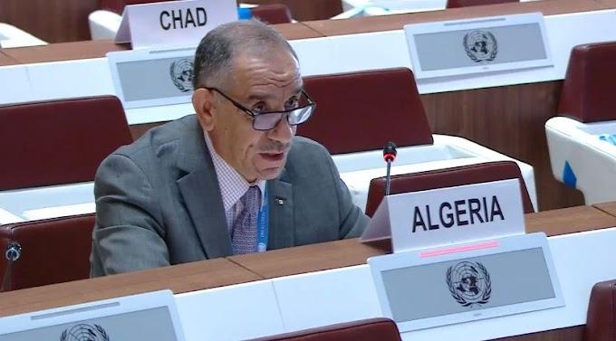 """Diplomático argelino: """"La ofensiva verbal marroquí contra Argelia y los organismos internacionales tiene como objetivo ocultar el sufrimiento del pueblo saharaui."""""""