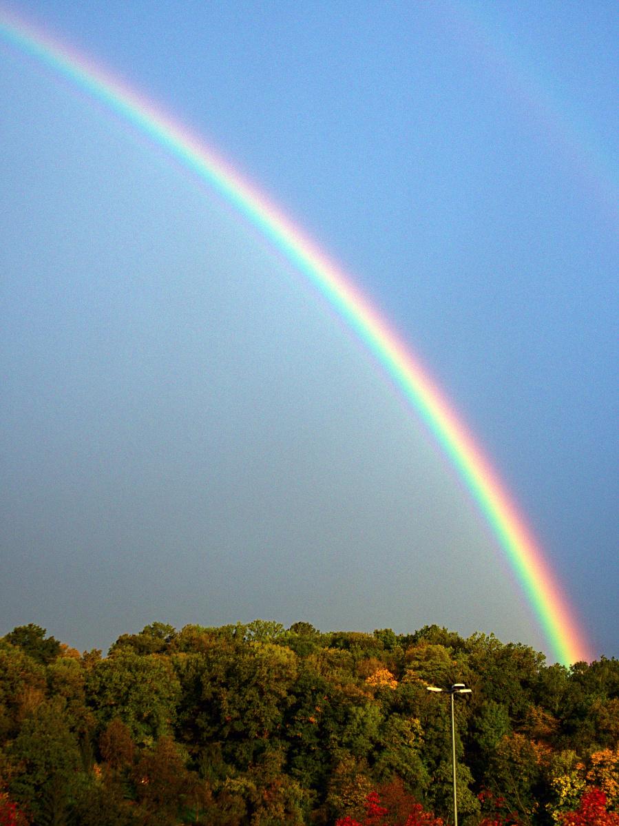 #279 XiaoYI Zoom Lens 12-40mm 3.5-5.6 –  Regenbogen  DND