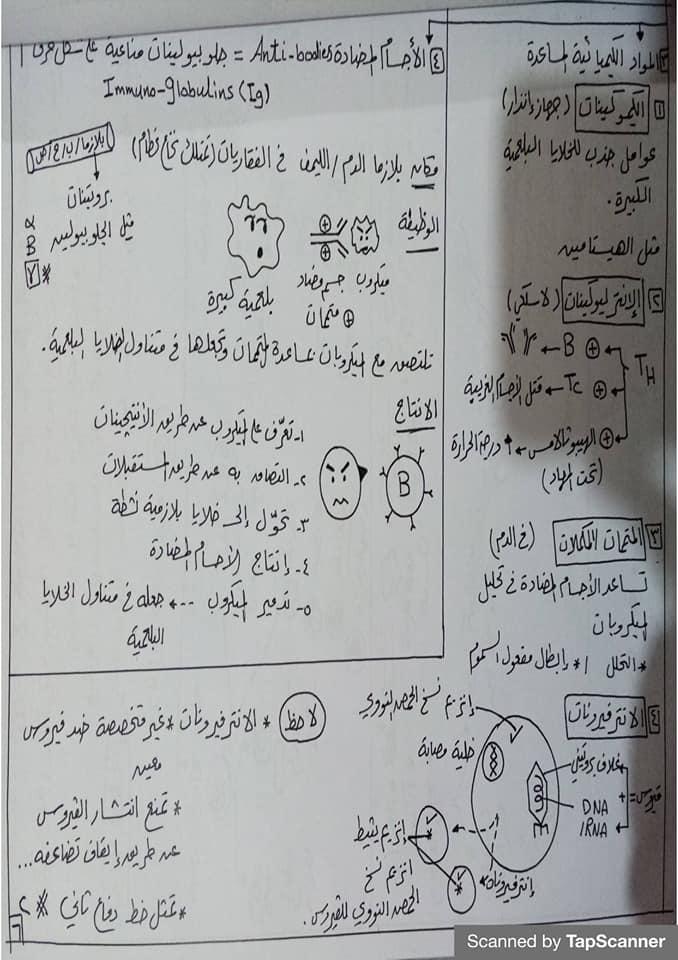 مراجعة المناعة أحياء للثالث الثانوي مستر محرم 6