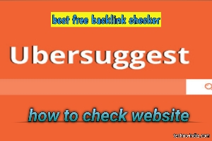 How to check my website backlinks