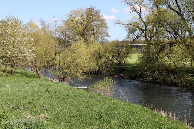 Flusslauf der Werra nahe der Bockswiese