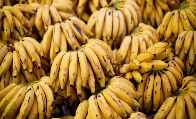 Με εξαφάνιση απειλούνται οι μπανάνες λόγω τροπικής ασθένειας