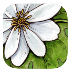 Moms, For Real: Top Gardening and Plant Apps