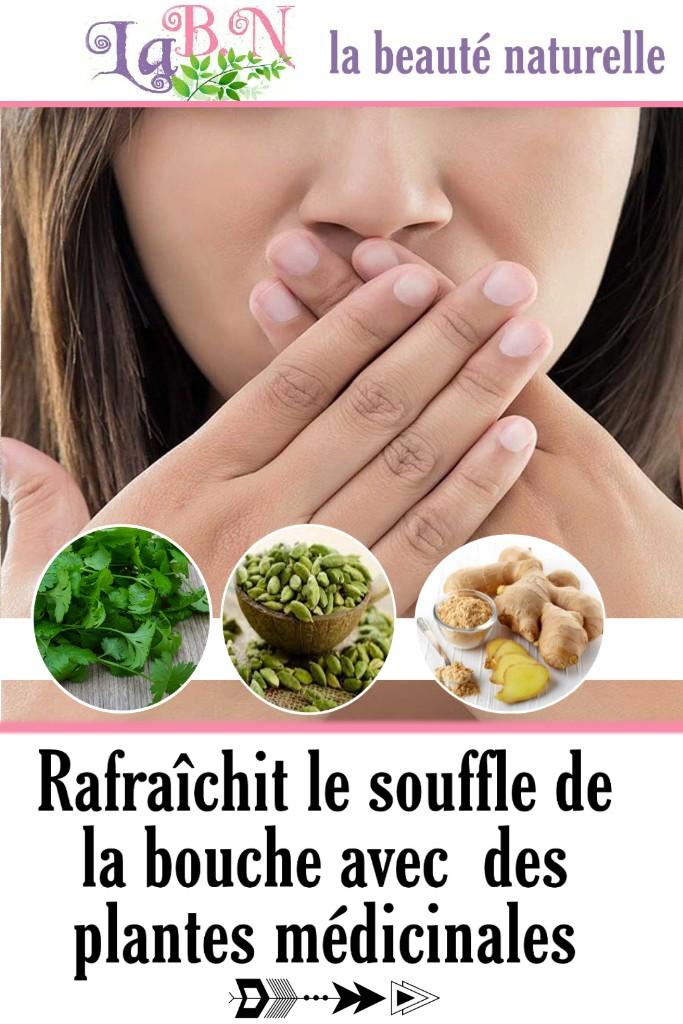 Rafraîchit le souffle de la bouche avec  des plantes médicinales