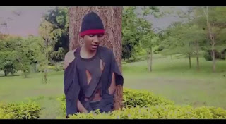 VIDEO  |  Tunulaus _ My Number One mp4 | download
