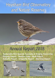 2018 HEYSHAM OBS REPORT AVAILABLE NOW