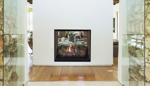 GAS- Direct Vent Fireplace