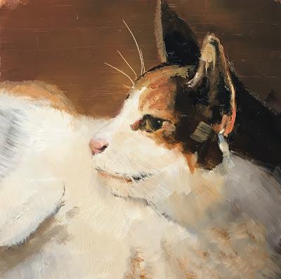 tortoiseshell cat, oil painting by Philine van der Vegte