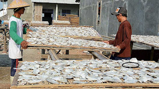 Ternyata Terlalu Banyak Makan Ikan Asing Dapat Memicu Kanker
