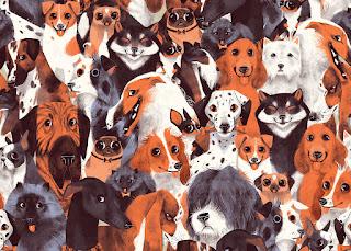 Solo Perros