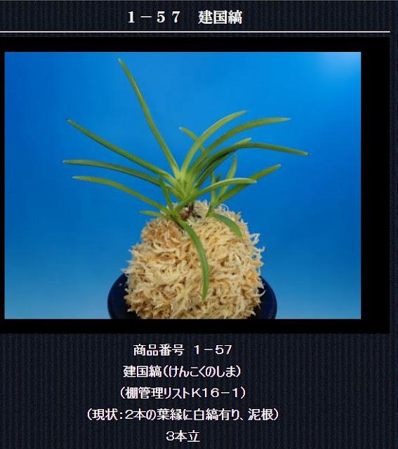 http://www.fuuran.jp/1-57.html