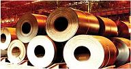 Bhushan Power  Steel