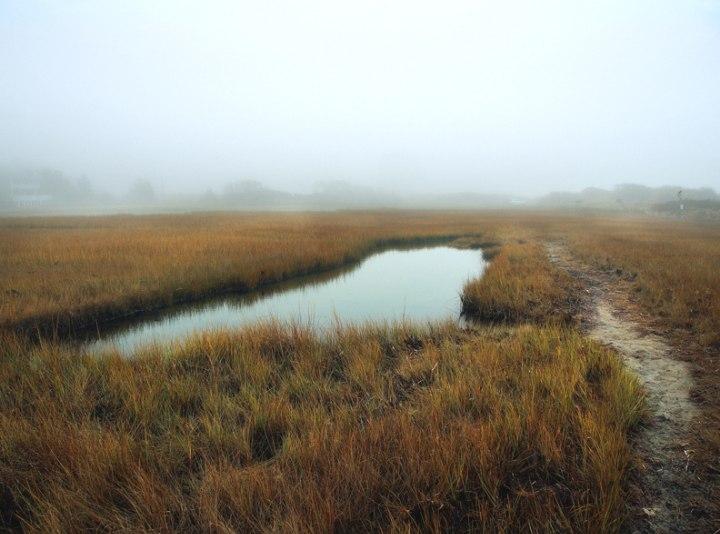 John Rosenthal, Photographer - Marsh Land