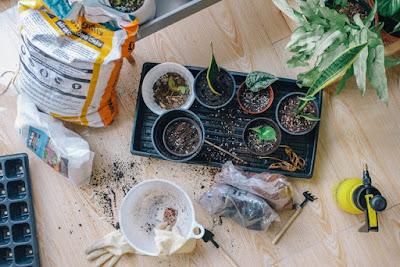 soil testing kits for gardens