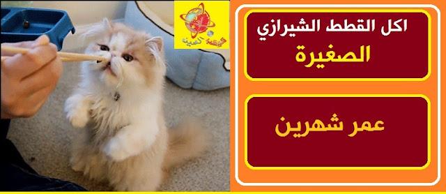 """""""اكل القطط الصغيرة"""" """"اكل القطط الصغيرة عمرها شهرين"""" """"اكل القطط الصغيرة في المنام"""" """"اكل القطط الصغيرة عمرها شهر"""" """"اكل القطط الصغيرة عمرها أقل من شهر"""" """"اكل القطط الصغيرة الرضيعة"""" """"اكل القطط الصغيرة في البيت"""" """"اكل القطط الصغيرة شهر"""" """"اكل قطط صغيرة"""" """"طعام القطط الصغيرة"""" """"اكل القطط الصغيرة شهرين"""" """"اكل القطط اقل من شهر"""" """"اكل القطط الصغيره عمر شهرين"""" """"اكل القطط عمرها شهرين"""" """"اكل القطط عمر شهرين"""" """"اكل قطة عمرها شهرين"""" """"اكل قطط عمر شهرين"""" """"اكل للقطط عمر شهرين"""" """"اكل القط عمر شهرين"""" """"اكل قطة عمرها شهر"""" """"اكل قطه عمرها شهر ونص"""" """"اكل قطط سن شهرين"""" """"اكل القطط عمر شهر"""" """"تفسير اكل القطط الصغيرة في المنام"""" """"اكل القطط في المنام"""" """"اكل القطط في المنام للعزباء"""" """"اكل القطط في المنام للحامل"""" """"اكل القط في المنام"""" """"اكل قطط في المنام"""" """"اكل القطط عمرها شهر"""" """"اكل قطط عمرها شهر"""" """"اكل القطط سن شهر"""" """"اكل قطط عمر شهر"""" """"اكل القطط الرضيعة"""" """"اكل القطط حديثة الولاده"""" """"اكل القطط الصغيرة في المنزل"""" """"اكل القطط في البيت"""" """"اكل للقطط في البيت"""" """"اكل قطط في البيت"""" """"اكل القطط البيتي"""" """"اكل للقطط من المنزل"""" """"اكل القطط البلدي"""" """"اكل القطط البلدى الصغيرة"""""""