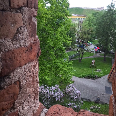 Vilniaus bernardinų bažnyčios kiemas ir gotikinis mūras