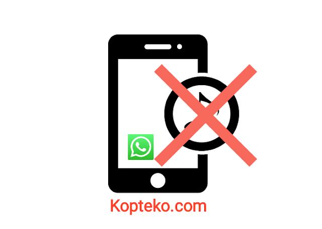 WhatsApp Tidak Ada Suara