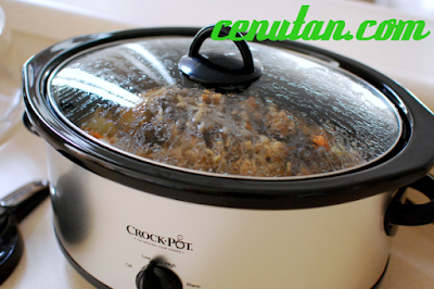 9 Tips for Fearful Crock Pot