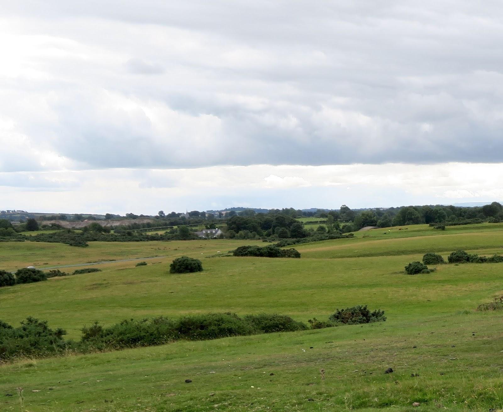 Curragh - Wikipedia