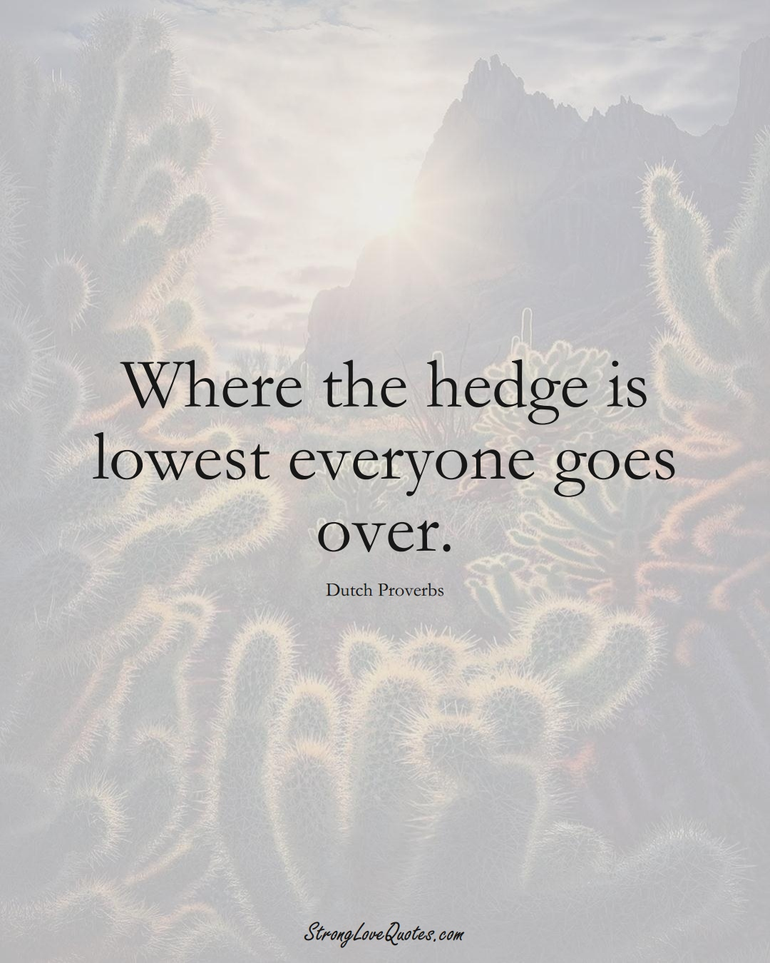 Where the hedge is lowest everyone goes over. (Dutch Sayings);  #EuropeanSayings