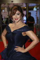 Payal Ghosh aka Harika in Dark Blue Deep Neck Sleeveless Gown at 64th Jio Filmfare Awards South 2017 ~  Exclusive 126.JPG