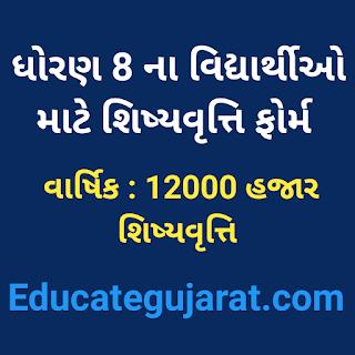 Std 8 scholarship form online sebexam.org