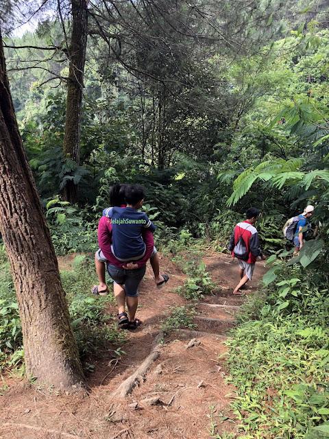 Menapaki turunan menuju Curug Badak Batu Hanoman Tasikmalaya || JelajahSuwanto