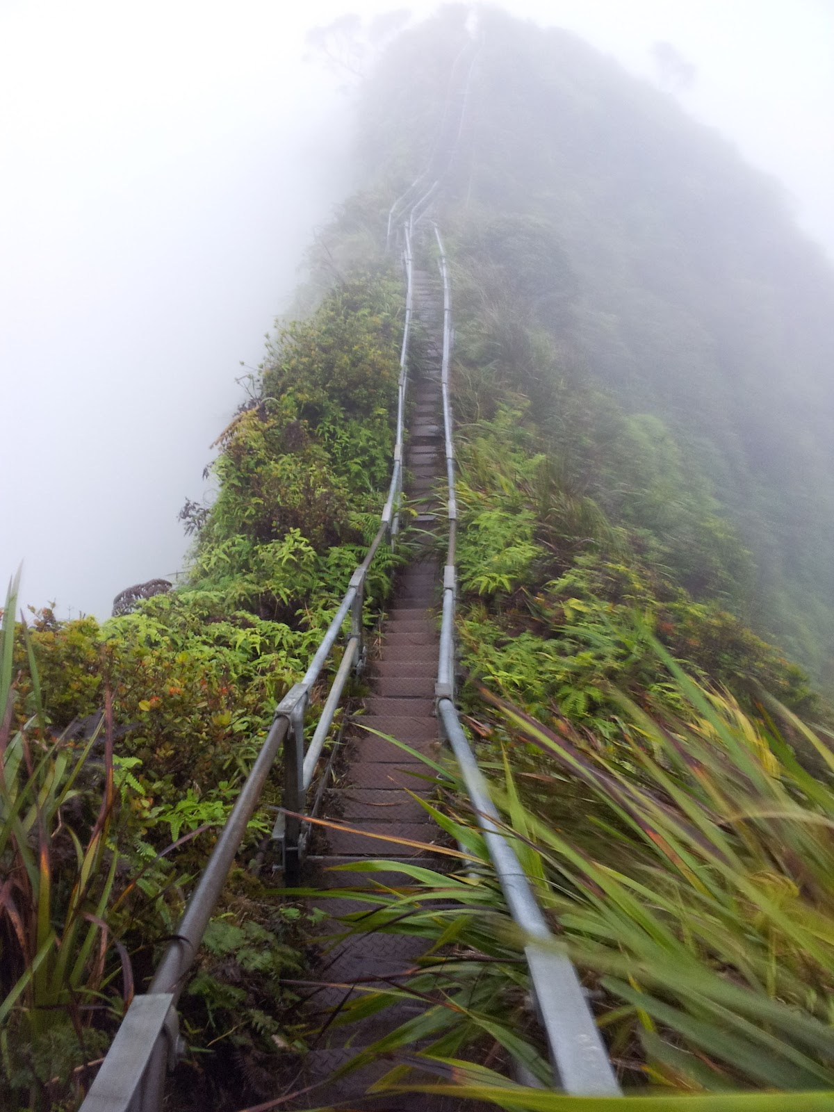 Happy, But Not Unscathed: Climbing the Haiku Stairs ...